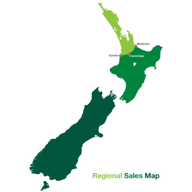 regional sales map 2021-01